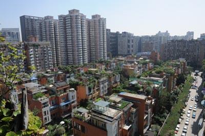 成都市南边某小区楼顶户户都有屋顶花园.